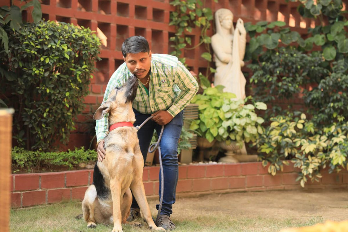 Up to 20% Off at Home Dog Trainers, New Delhi