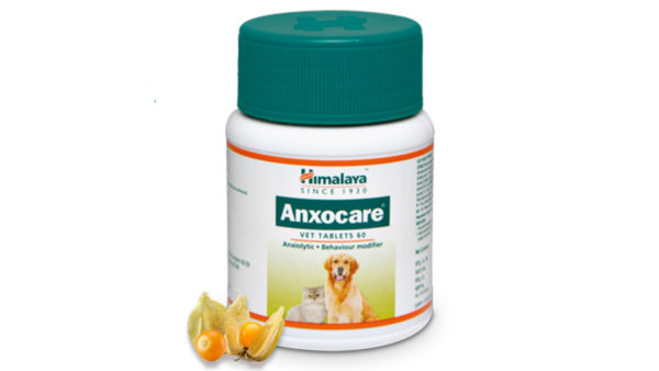 Himalaya Anxocare Anti Anxiety Tablets, 60 tabs (Pack of 2)