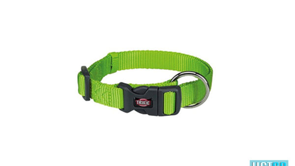 Trixie Premium Solid Dog Collar, Apple Green