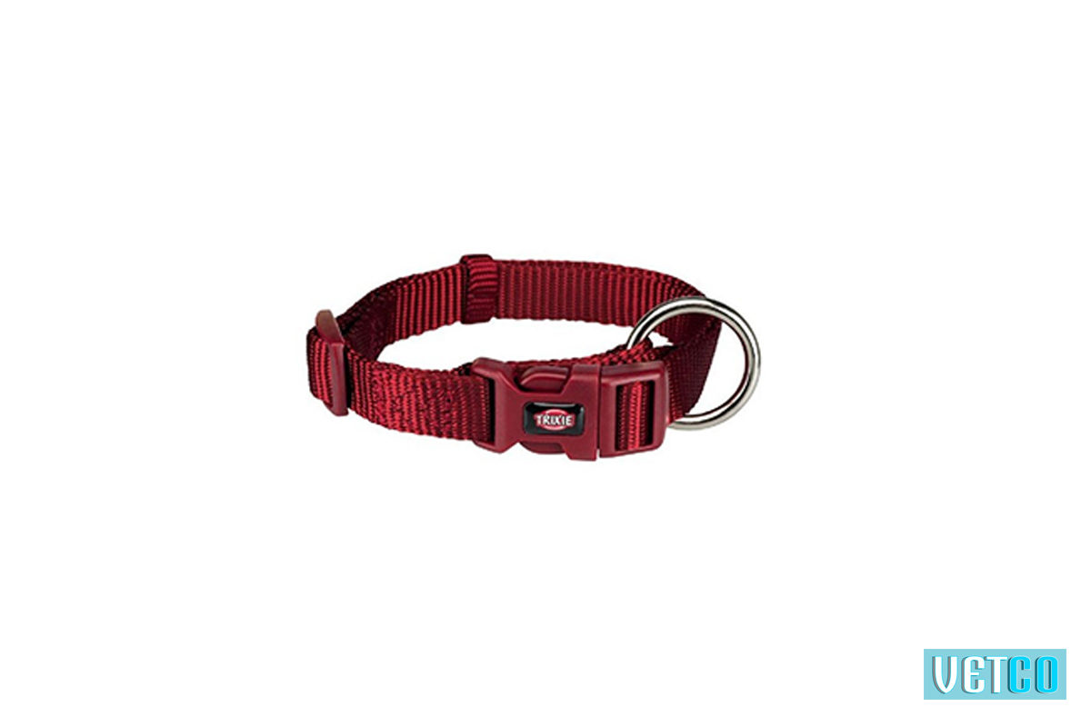Trixie Premium Solid Dog Collar, Burgundy