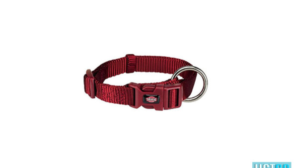 Trixie Premium Solid Dog Collar, Burgundy