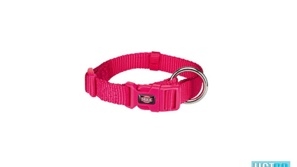 Trixie Premium Solid Dog Collar, Fuchsia