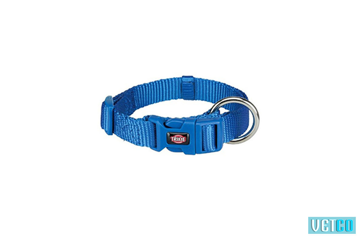 Trixie Premium Solid Dog Collar, Royal Blue