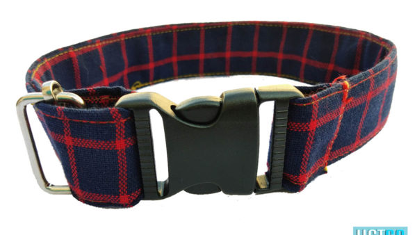 Hazel and Co Box't Up Dog Collar