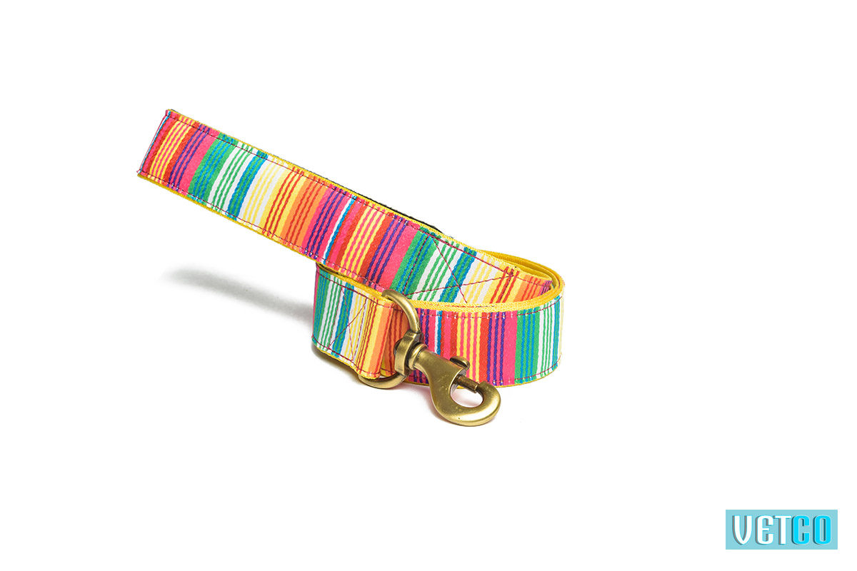 Pet Wale Colourful Stripes Leash with Padded Handle