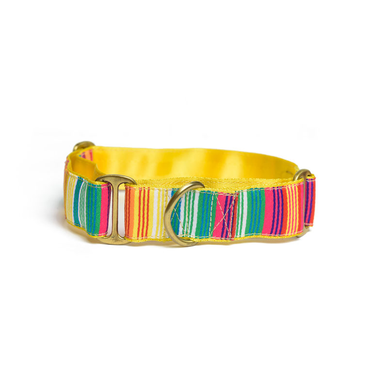 Pet Wale Colourful Stripes Martingale Dog Collar