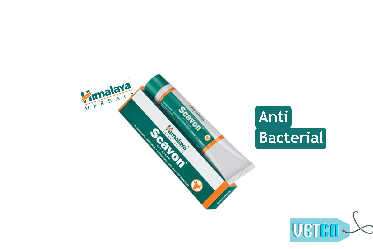 Himalaya Scavon Anti-Bacterial Vet Cream