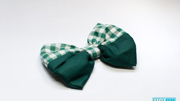 Mutt Ofcourse Gingham Green Dog Bow