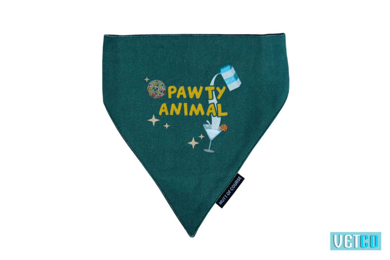 Mutt Ofcourse Pawty Animal Bandana