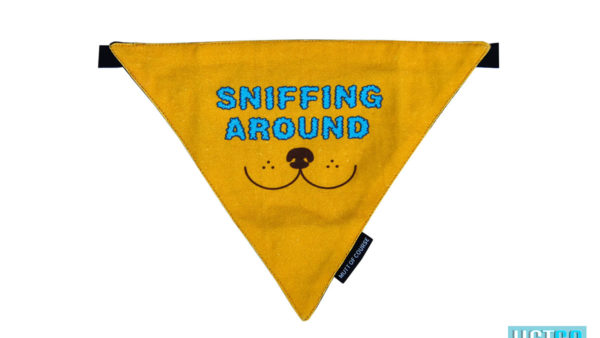 Mutt Ofcourse Sniffing Around Bandana