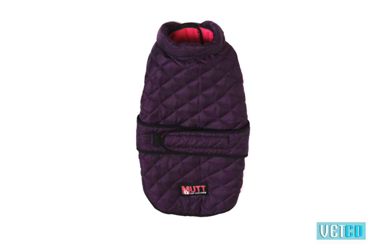 Mutt Ofcourse Waterproof Bomber Jacket - Purple