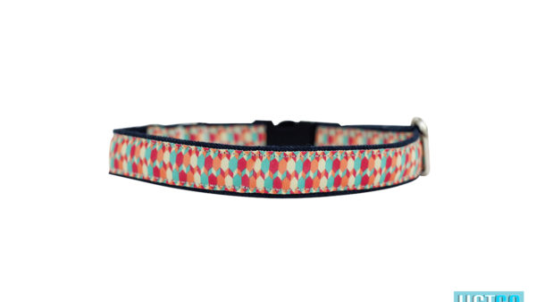 Mutt Ofcourse Candy Barr Dog Collar