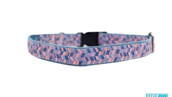 Mutt Ofcourse Geometrical Printed Dog Collar