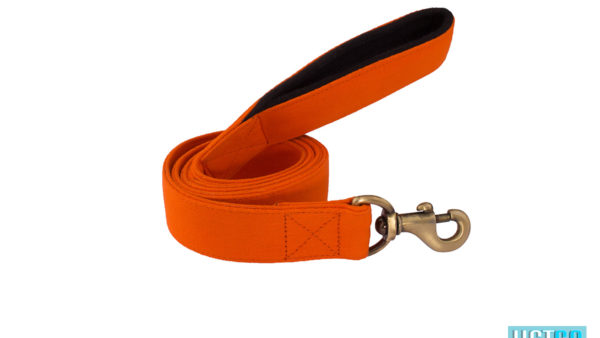 Pet Wale Orange Leash with Padded Handle