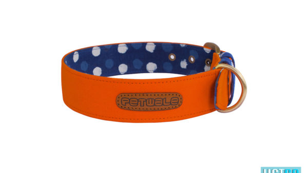Pet Wale Orange Belt Dog Collar
