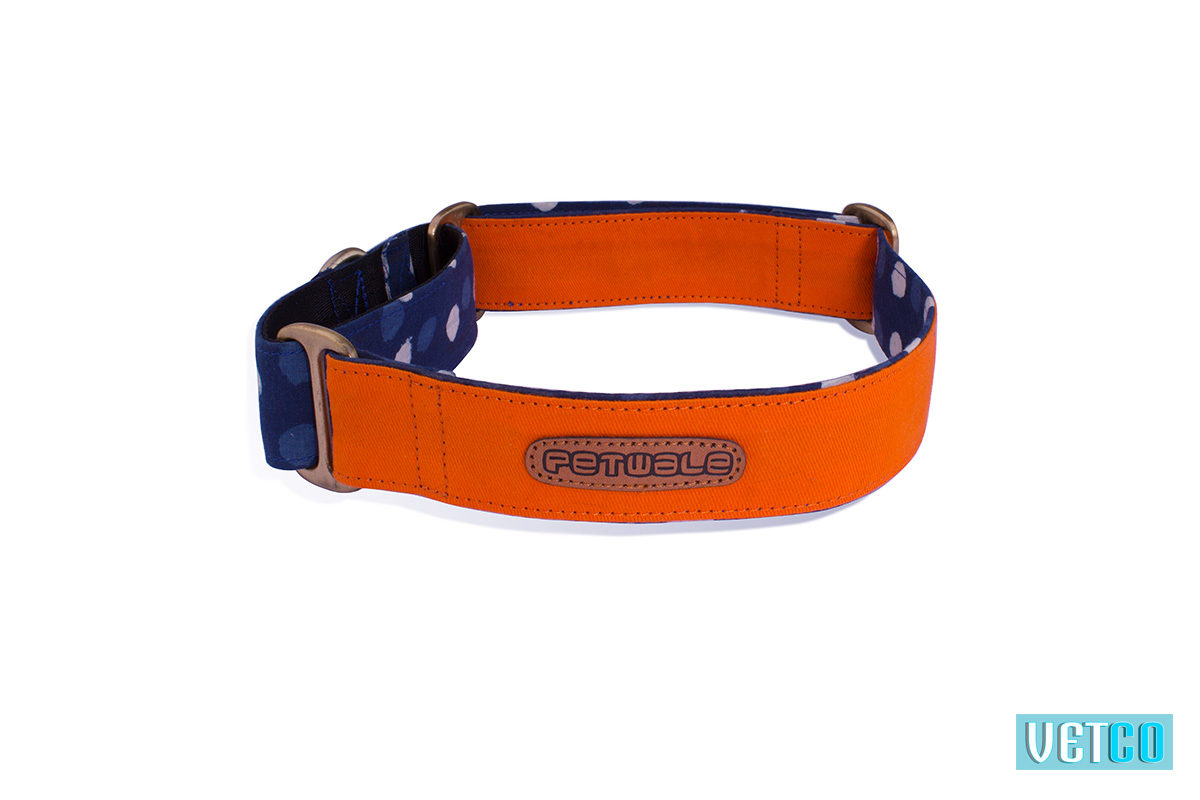 Pet Wale Orange Martingale Dog Collar
