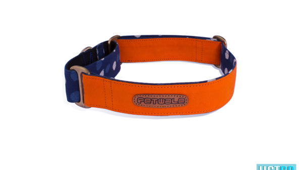 Pet Wale Orange Martingale Dog Collar