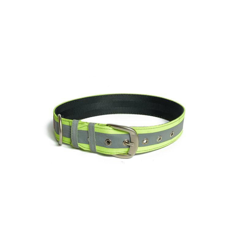 Pet Wale Reflective Green Belt Collar Dog Collar