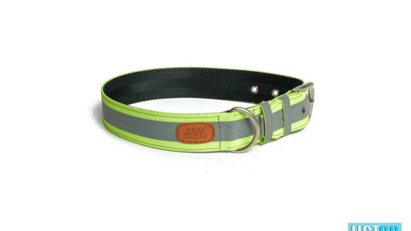 Pet Wale Reflective Green Belt Collar Dog Collar