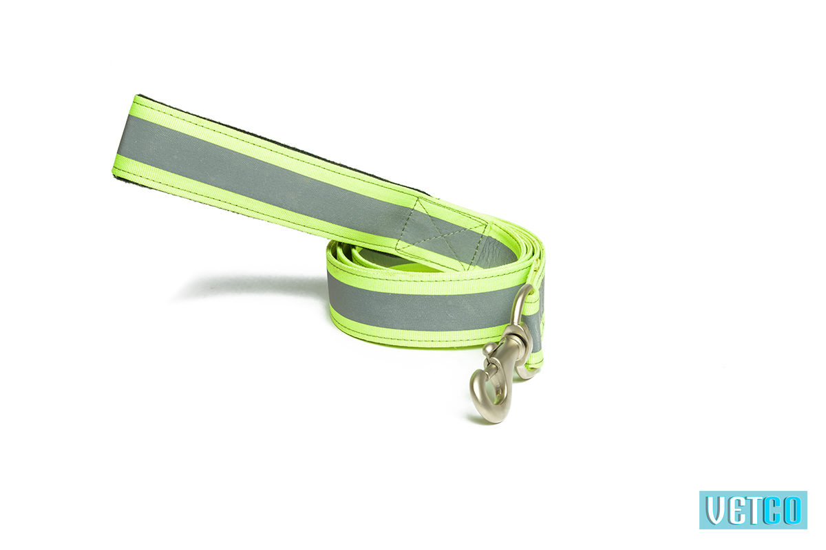 Pet Wale Reflective Green Dog Leash with Padded Handle