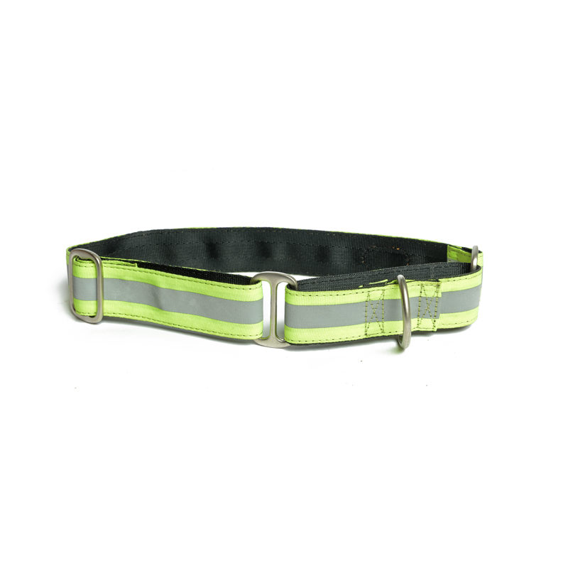 Pet Wale Reflective Green Martingale Dog Collar