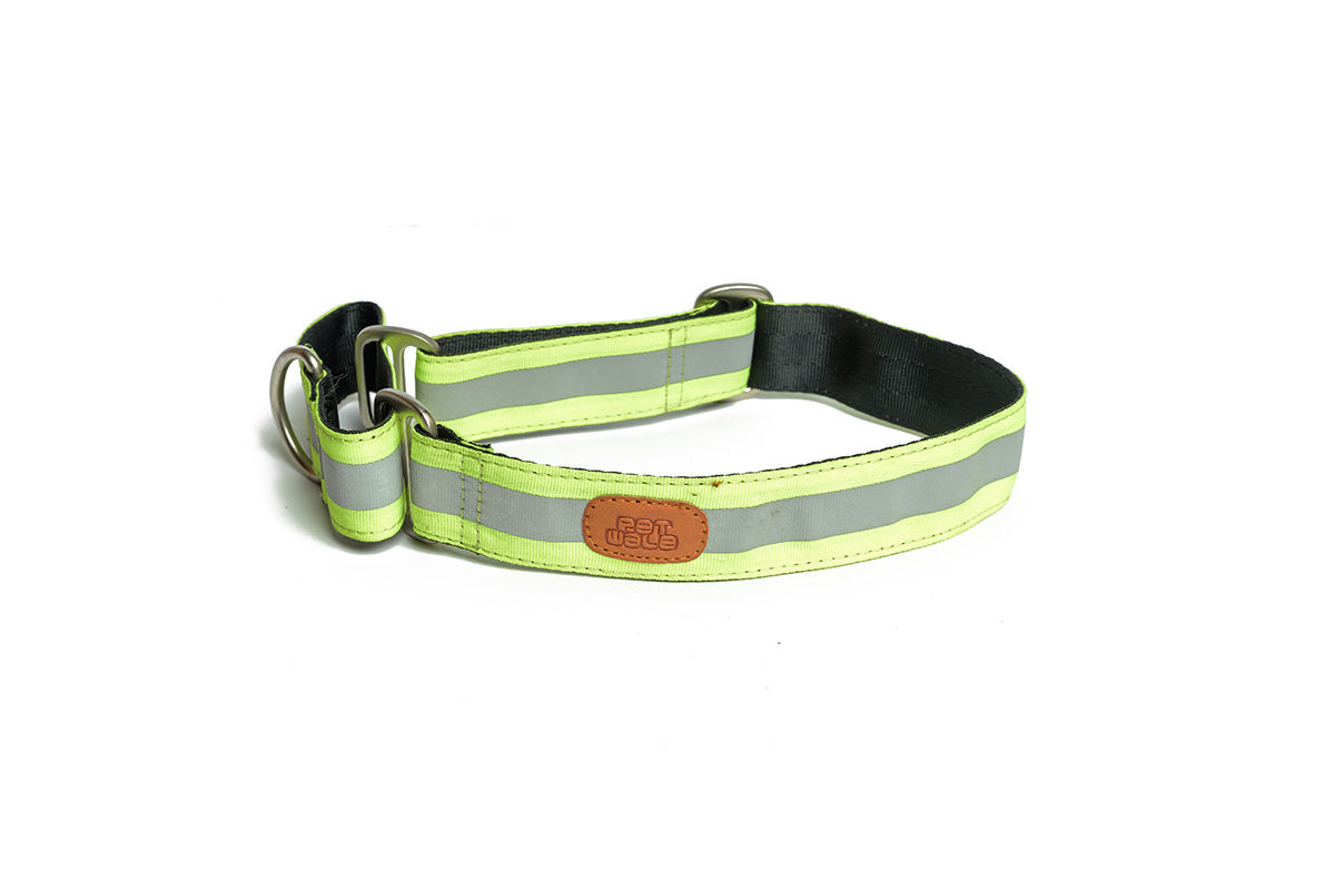 PetWale Reflective Green Martingale Dog Collar