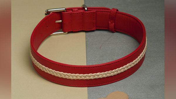 We Exist Candy Apple Red Vegan Leather Dog Collar