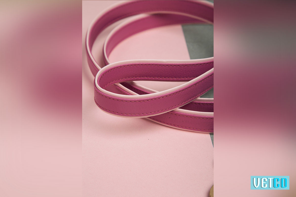 We Exist Cotton Candy Swirl Vegan Leather Leash