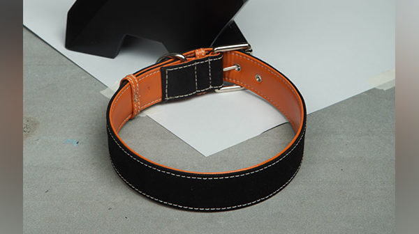 We Exist Orange Crush Denim & Vegan Leather Dog Collar