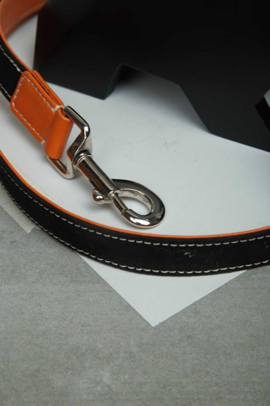 We Exist Orange Crush Denim & Vegan Leather Leash