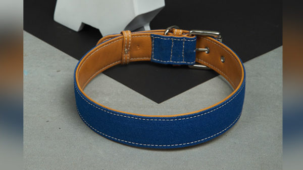 We Exist Puppy Love Tan Denim & Vegan Leather Dog Collar