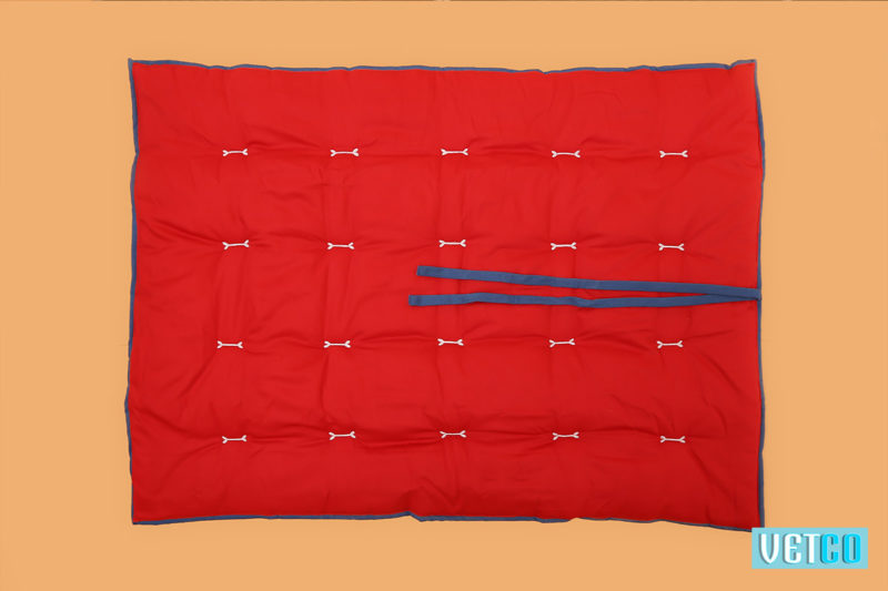We Exist Ruby Red & Cobalt Blue Reversible Bed