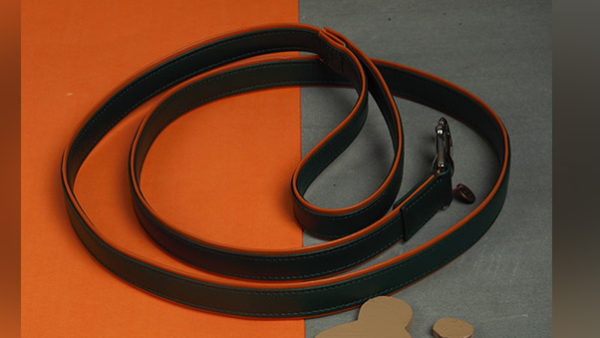 We Exist Through the Garden Green Vegan Leather Leash