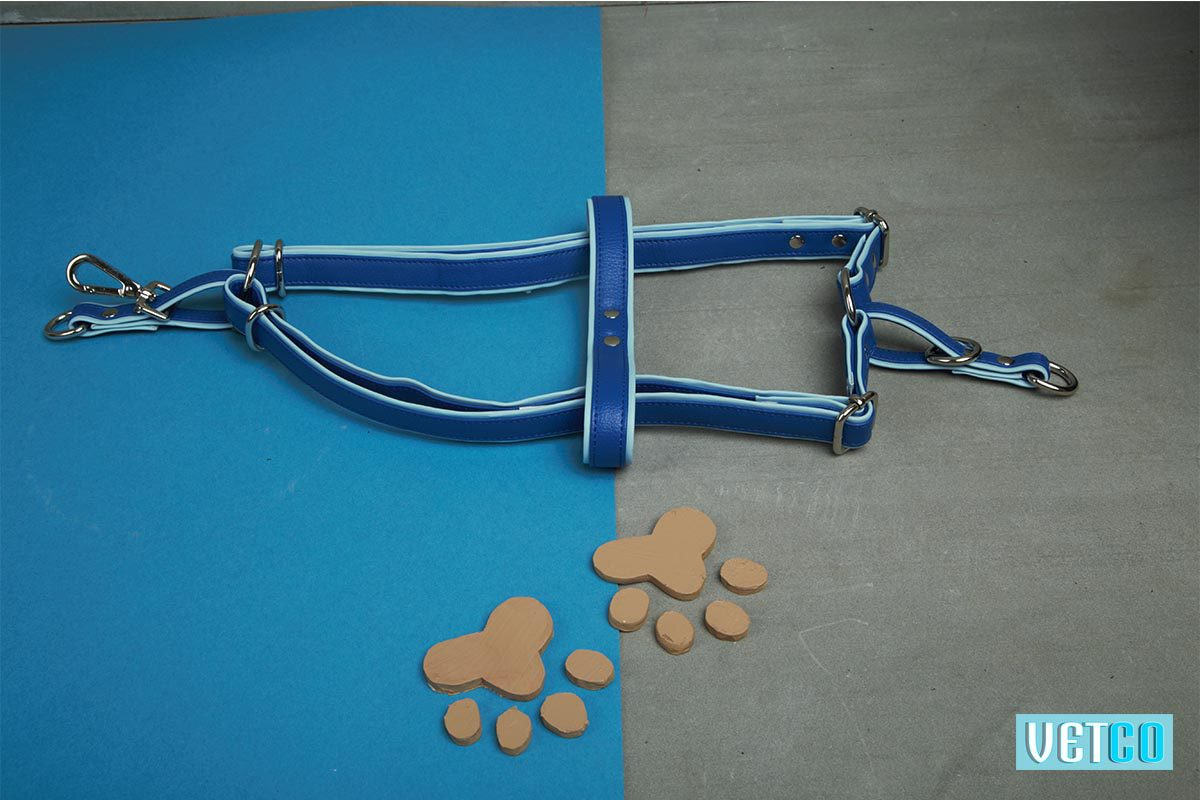 We Exist Tickle Me Blue Vegan Leather Harness