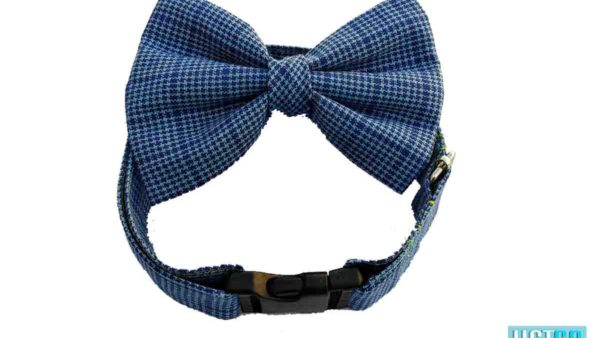 Hazel & Co Blue Lagoon Dog Collar & Bow Set