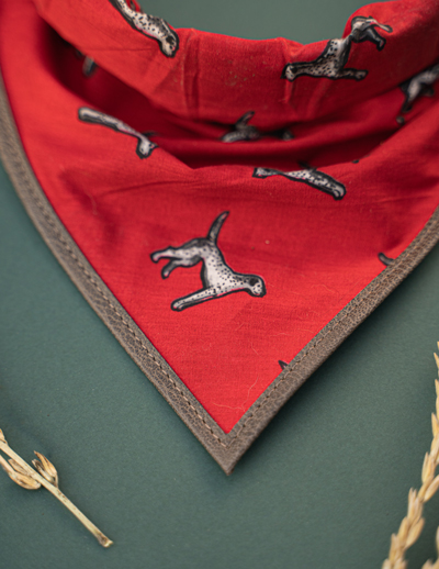 We Exist Faithful Hound Bandana & Collar Set