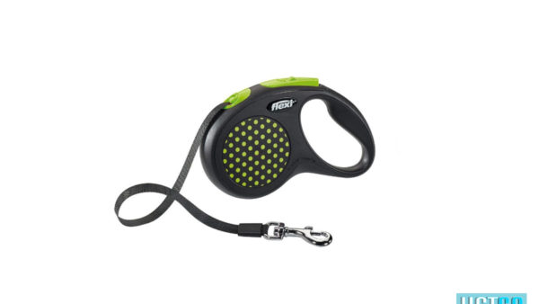 Flexi Design Retractable Tape Dog Leash - Green