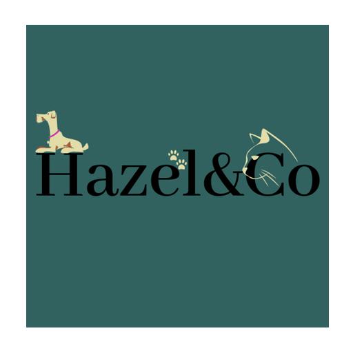 hazel & co logo