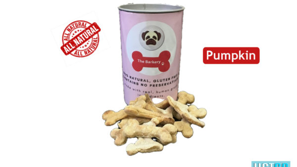 the barkery pumpkin dog biscuit