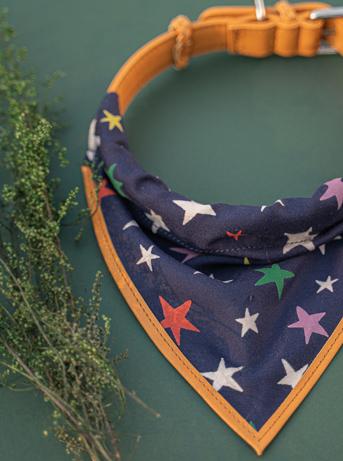 We Exist The Starry Night Bandana & Collar Set