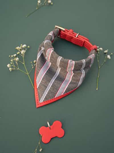 We Exist Classic Stripe Bandana & Collar Set