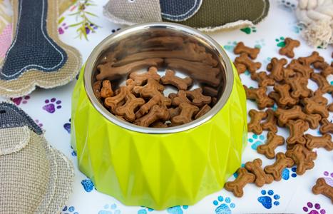 Petlogix Premium Feeding Bowl with Steel Inserts.
