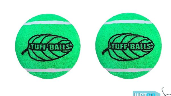 Petsport Mint Tuff Ball Dog Toy