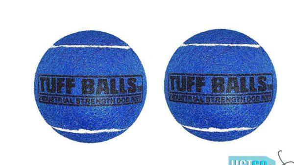 Petsport Tuff Ball Dog Toy 2 Pack - Blue