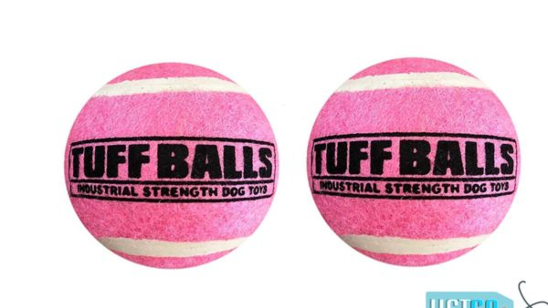 Petsport Tuff Ball Dog Toy 2 Pack - Pink