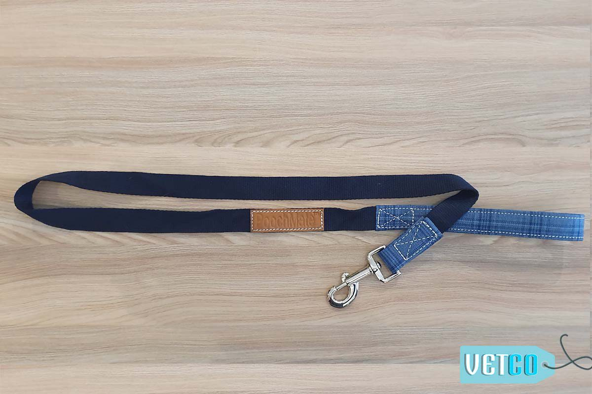 PoochMate Blue Checkered Dog Leash with Padded Handle