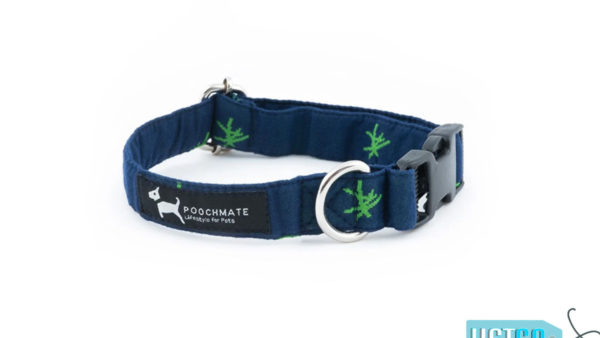 PoochMate Cotton Mandarin Dog Collar - Green & Navy
