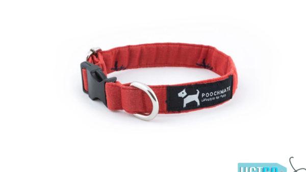 PoochMate Cotton Mandarin Dog Collar - Red & Navy