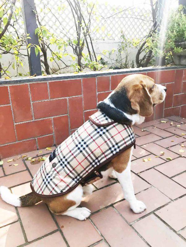PoochMate Duffle Checks Dog Coat