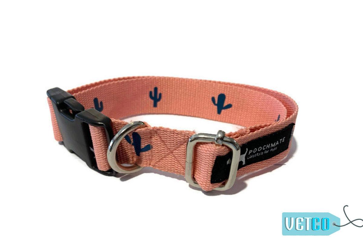 PoochMate Fancactus Cotton Webbing Dog Collar
